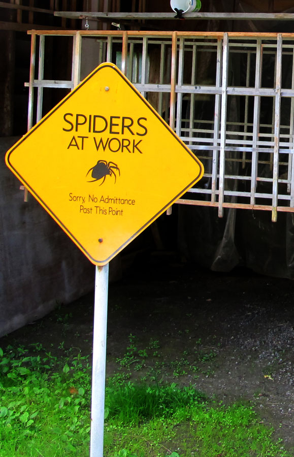 Caution; Spiders Working